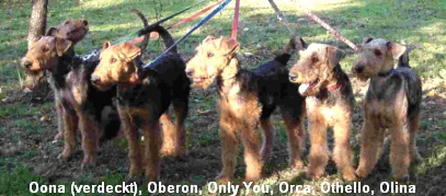 Oona (verdeckt), Oberon, Only You, Orca, Othello, Olina