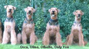 Orca, Olina, Othello, Only You