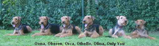 Oona, Oberon, Orca, Othello, Olina, Only You